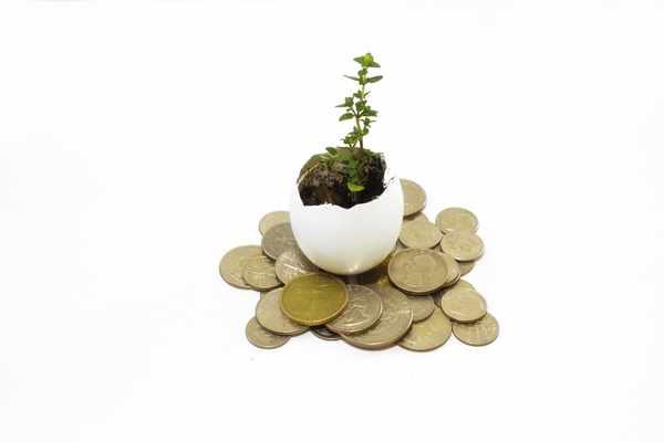 Kredyty bez bik Ostrzeszów  zawnioskuj i wyślij sms o treści: WNIOSEK na 7393 (3.69 zł za sms)