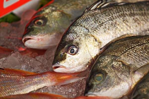 Przetwórstwo rybne praca Białogard